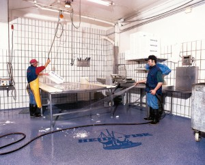 A veterinary facility depicted with hygiene critical flooring installed, inclusive of a company logo displayed within.