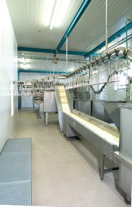 A dairy manufacturing line takes full advantage of USDA approved flooring.