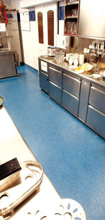 Blue Dependable Flooring In A Kitchen With Stainless Steel Counters.