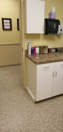 Animal Hospital Flooring That Matches The Beautiful Countertops In The Examination Room.