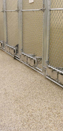 A Row Of Kennels In An Animal Hospital With Exceptional Flooring.
