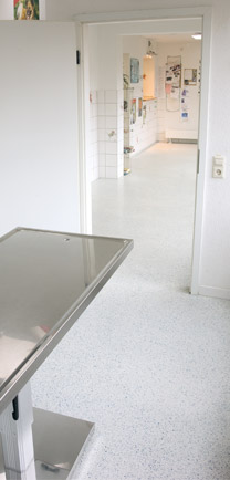 Animal Hospital Flooring That Seamlessly Flows From The Hall Into The Exam Room.