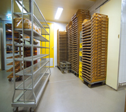 Bakery flooring in food storage area.