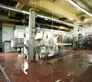 Meat process workers clean wet floor cemented sealer.
