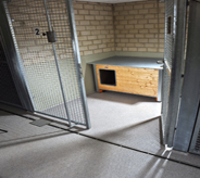 Opened kennel gate for dogs displays interior flooring design.