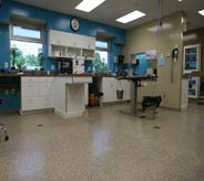 A flake floor accents this emergency room lab area.