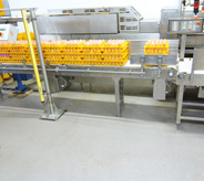 Food grade flooring in egg prodcution facility.