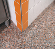 Frozen food flooring shown in flake accents tile wall.
