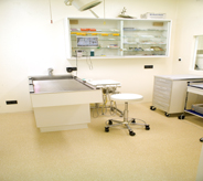 A veterinary groom area is kept bright with a natural colored floor.