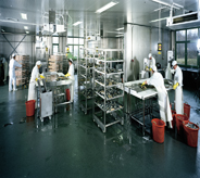 Large open food processing center keeps immaculately clean with shining dark green mold resisting floor design.