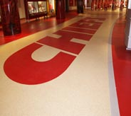 The team logo is proudly displayed on the stadium floor.
