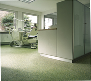 Dental office front exam room filters sun light from large window panes illuminating light green seamlessly coated flooring that is UV protected.