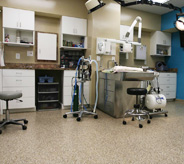 Veterinary medical room floor.