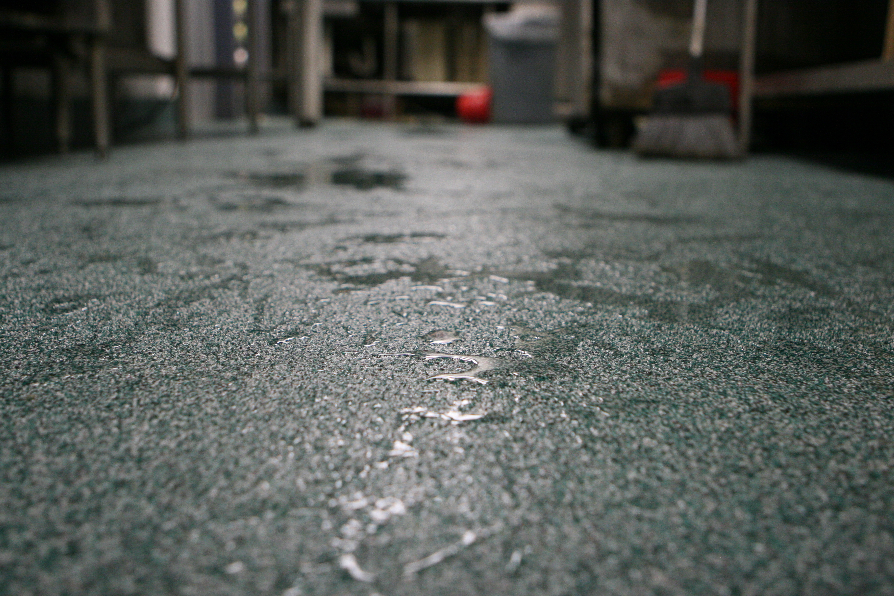 Waterproof Flooring For Kitchens Waterproof Flooring